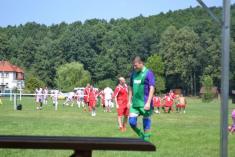 Mezinárodní turnaj kopaná 7.7.2012
